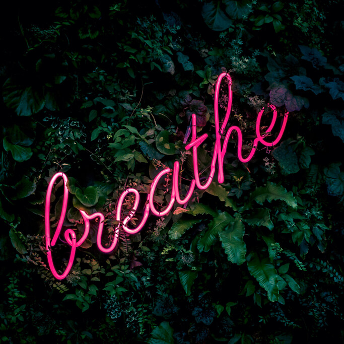 breathe pink neon lights on a green plant wall